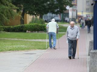 """Straipsnis """"Senolius tarnyboms tenka gelbėti nuo juos """"gelbstinčių"""" kaimynų"""""""